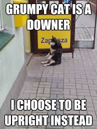 Grumpy cat is a downer I choose to be upright instead - Upbeat dog ... via Relatably.com