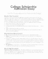 College Essay Format Template Awesome Format For A Scholarship Essay