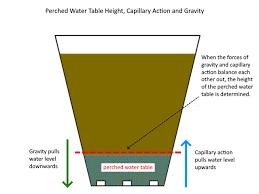 Explaining Capillary Action Deep Green Permaculture