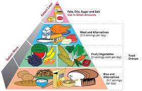 health and wellness lid blog balanced diet chart