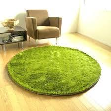 rug that looks like grass grass rug