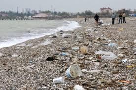Экология Крыма экологическая ситуация в Крыму Экология Крыма