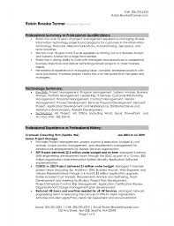 resume career summary examples professional summary resume samples throughout 87 enchanting sample professional resume resume overview examples