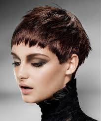 Short Hairstyle For Women 28 Inspiration Rainbow Room Short Brown Hairstyles Short Hairstyles Pinterest