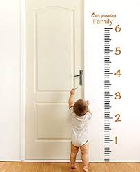 Giant Measuring Stick Growth Chart Amazon Com Elma332tuttle Giant Vinyl Growth Chart Kit
