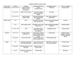 Biological Macromolecules Chart Organic Macromolecules Worksheet Worksheet Fun And Printable