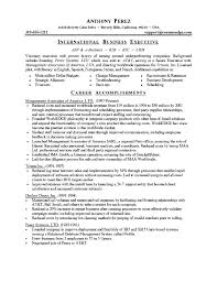 Best Business Resume Template Business Resume Template Madinbelgrade