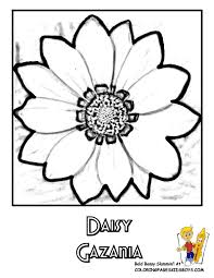 Small Picture Coloring Flower Page Top Ten Popular Flowers Free Daisies