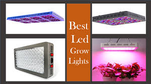 Best Commercial Led Grow Lights 2018 Best Cob Led Grow Light 2019 You May Consider
