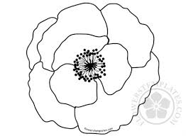 poppy template poppies flowers templates