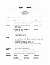 Job Resume Objective Examples Beautiful Career Example Professional