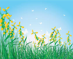 Grass and flowers background Photography Romantic Grass Flowers Background Download Link Preview This Vector Vectorspedia Grass Flowers Background Ai Svg Eps Vector Free Download