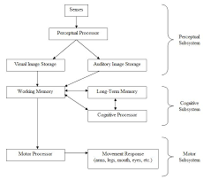 Long Term Memory Chart Human Processor Model Wikipedia
