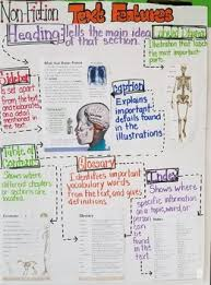 Skeletons Inside And Out Non Fiction Text Features Anchor Chart