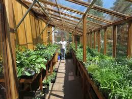 how big should your greenhouse be