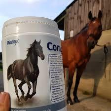 Equine Joint Supplement Comparison Chart Riaflex Complete Ha Joint Supplement