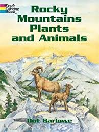 Small Picture Grand Canyon Plants and Animals Coloring Book Dover Nature