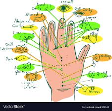 Hand Chart Reflexology Hand Chart