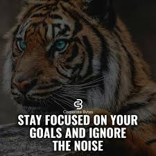 Stay Focused On Your Goals And Ignore The Noise Life Tiger