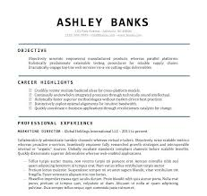 Resume Word Document Classy Standard Resume Template Word Sample Resume Templates Word Free