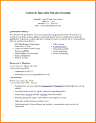 10 Summary Examples For Resumes Foot Volley Mania