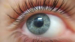 Image result for point of view eyes