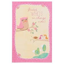 New Baby Congratulations Cards American Greetings Whos In Charge Now New Baby Congratulations Card