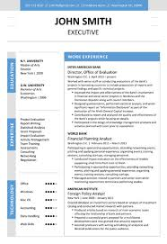 Executive Resumes Templates Impressive EXECUTIVE Resume Template Trendy Resumes