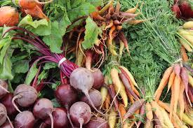 Organic Kitchen Garden Permaculture Perth Self Sustaining Garden Kitchen Gardens