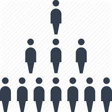 Person Chart Statistics And Report By Popcic