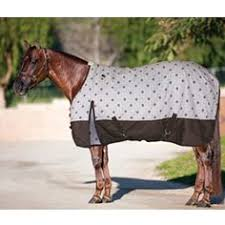 15 Best Horse Blankets Images Horses Horse Tack Horse Care
