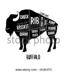 Buffalo Cuts Chart Cow Cutting Scheme Butcher Shop Beef Vector Illustration