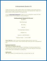 example short form short form resume example cv sample resume for students short sample