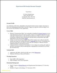 Student Resume Examples New Resume Templates Resume Template College