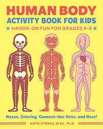 Human Body Activity Book For Kids Hands On Fun For Grades K