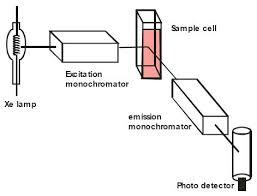 Spectroscopy Of Fwas