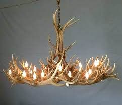deer antler decor ideas deer antler art small images of deer antler decorating ideas photos antler decor antler art and deer antler wall decor ideas