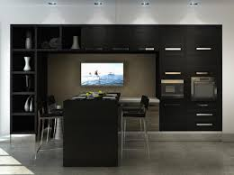 Small Kitchen Black Cabinets Small Kitchen With Black Cabinets Monsterlune