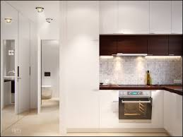 White Kitchen Modern Picture Of Modern Brown White Kitchen Color Scheme