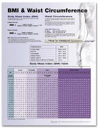 Ace Bmi Chart