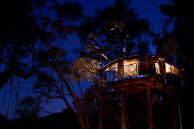 Five Epic Australian Treehouses You Can Spend The Night In Treehouse Accommodation Nsw