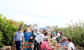 to enlarge the mission garden hosted more than membrillo trees on sunday heather hoch