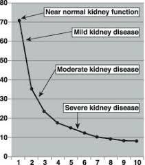 Hiv And The Kidneys Thebody