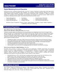 Advertising Resume Example Sample Marketing Resumes Examples Peppapp