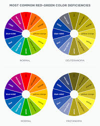 Understanding Color Blindness A Guide To Accessible Design