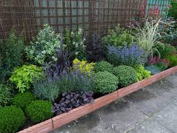 best garden plants. Low Border Plants | Are An Important Part Of Any Garden. Without Evergreen Best Garden F