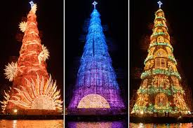 Hot shots photos of the day: Stegosaurus, Typhoon Hagupit, world'. The  worlds largest solar-powered Christmas tree stands proudly ...