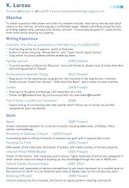 Gallery Of Fake Resume Example