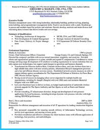 Cto Resume Example Example Ofsumes Cto Samplesume It Career Expert Chief Technology 12
