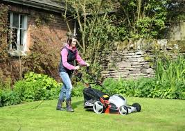 17 best ideas about rotary mower vintage ads retro tamsin tests the cobra electric rotary mower credit howard walker